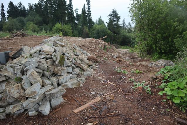 Фото В Чистых прудах восстановят 900 квадратных метров леса, залитого бетоном