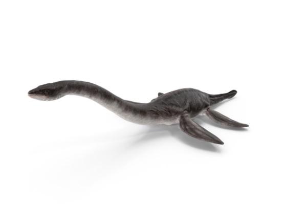 Фото На севере Кировской области нашли скелет динозавра