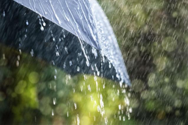 Фото В Кирове ожидается дождь