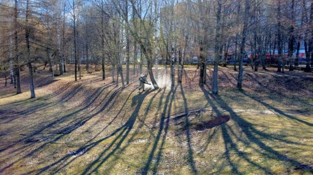Фото В администрации рассказали, какие парки Кирова обработали от клещей